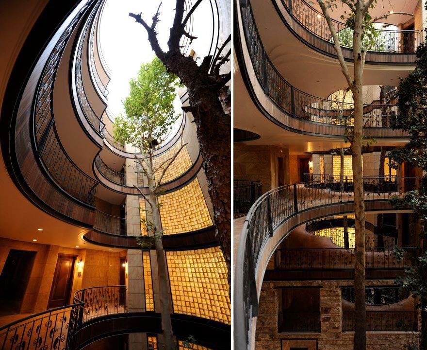 Buildings Whose Architects Refused To Cut Down Trees