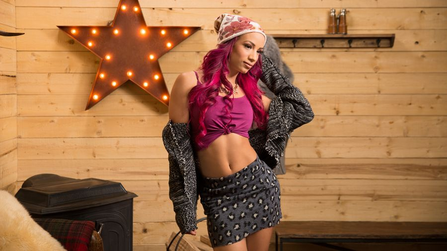 WWE Divas - Cabin Fever Photoshoot