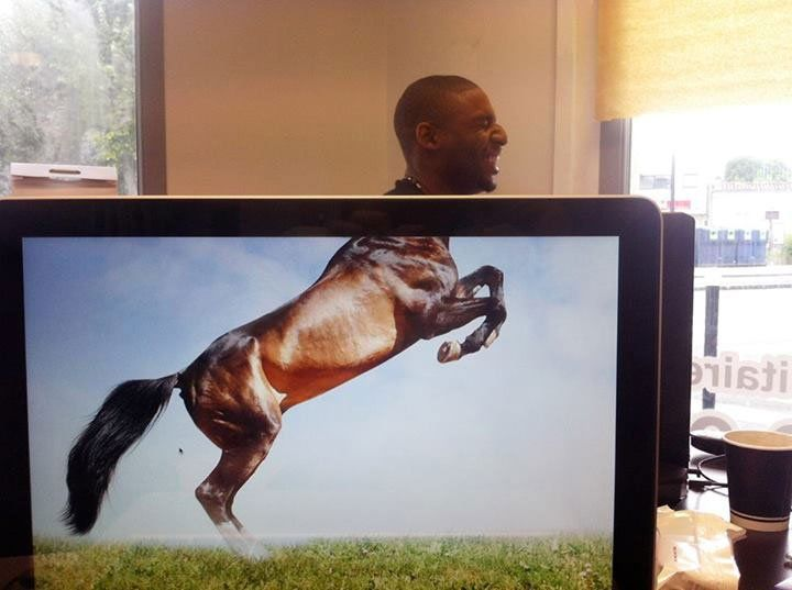 Coworkers Adding Heads to Animals on Desktop Backgrounds