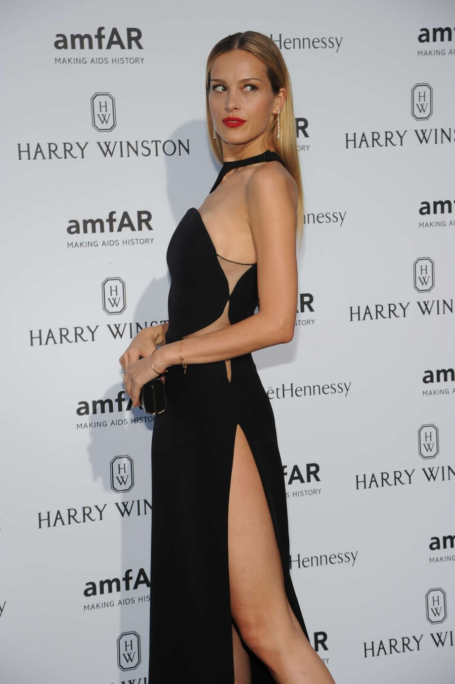 Petra Nemcova - amfAR Dinner in Paris