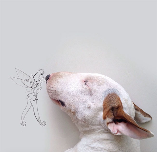 Fun Photo Series with A Dog My Wife Left Me With
