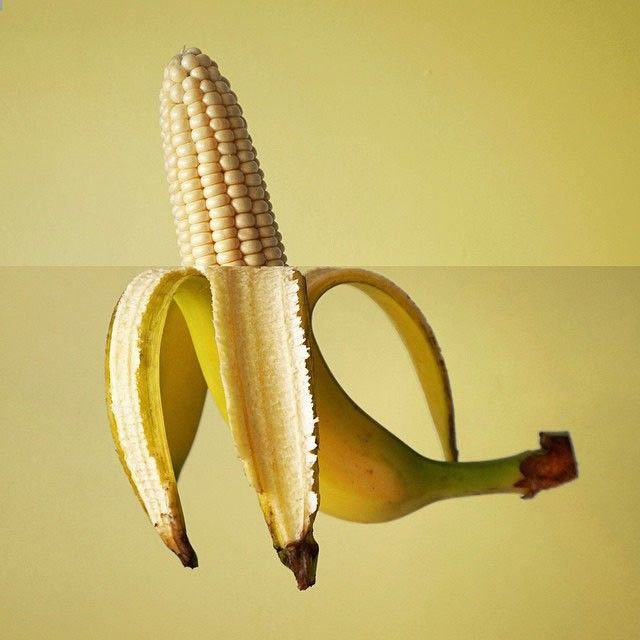 Photographer Creates Hilarious Images With Simple Trick