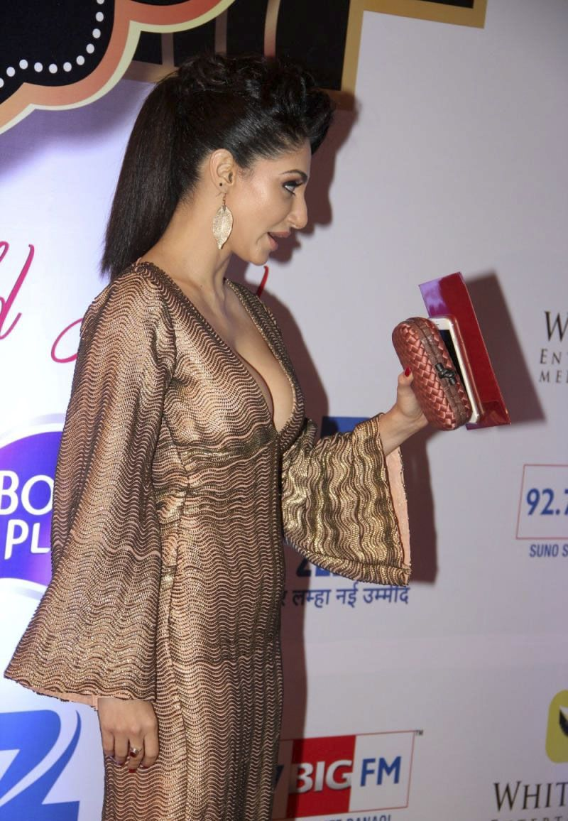 Reyhna Malhotra ZEE TV 8th Boroplus Gold Awards 2015 Photos