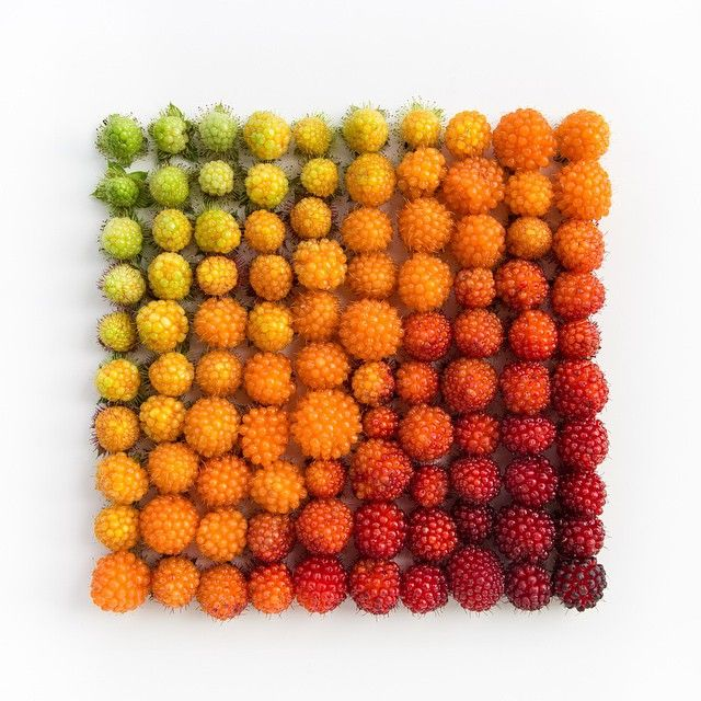 Satisfying Arrangements Of Everyday Objects