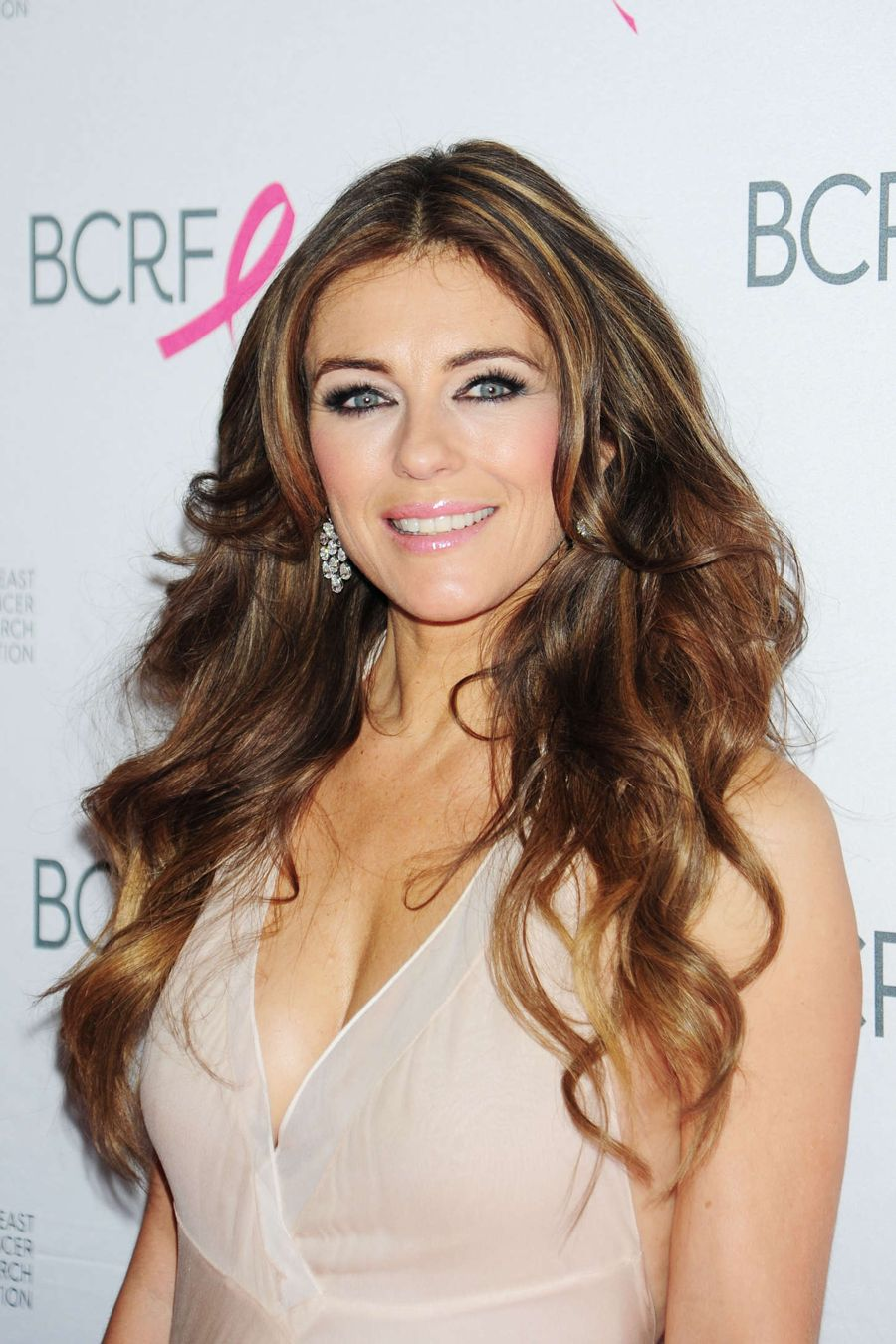 Elizabeth Hurley - Cancer Research Foundation Party