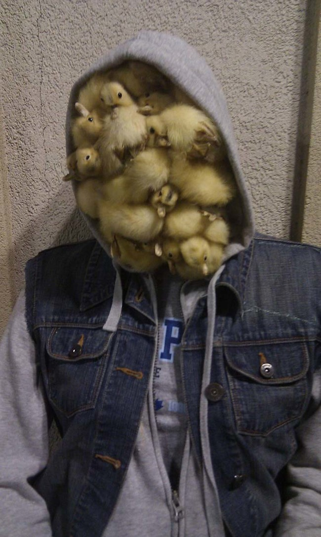 Photos That Are Pure Nightmare Fuel