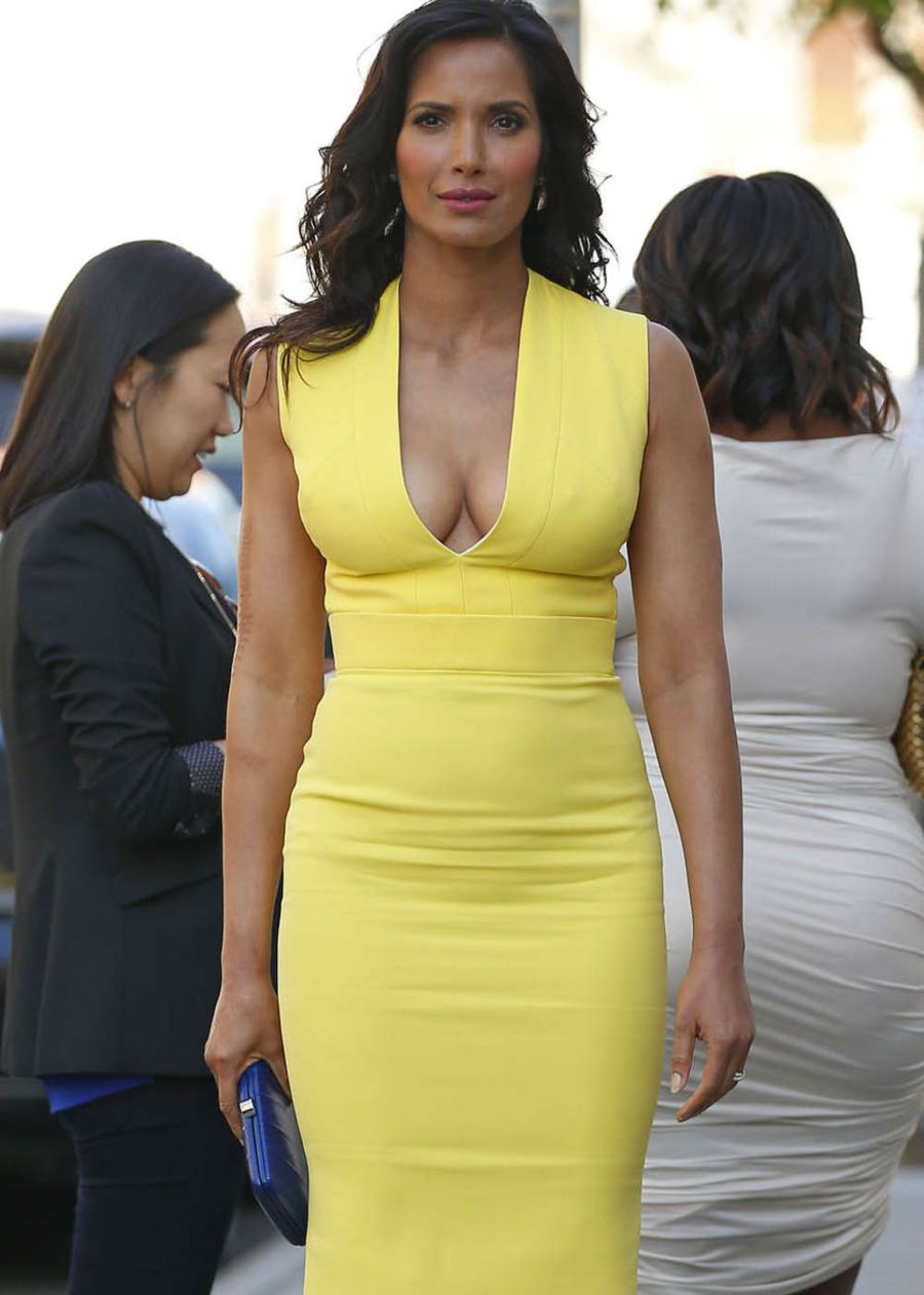 Padma Lakshmi - 2015 NBCUniversal Cable Entertainment