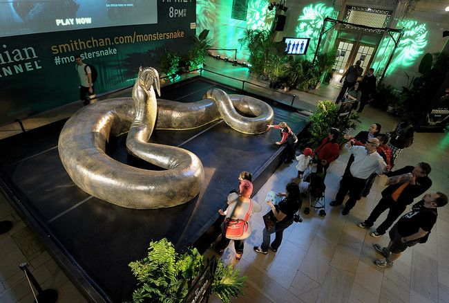 World's Largest and Scariest Snake Looked Like This