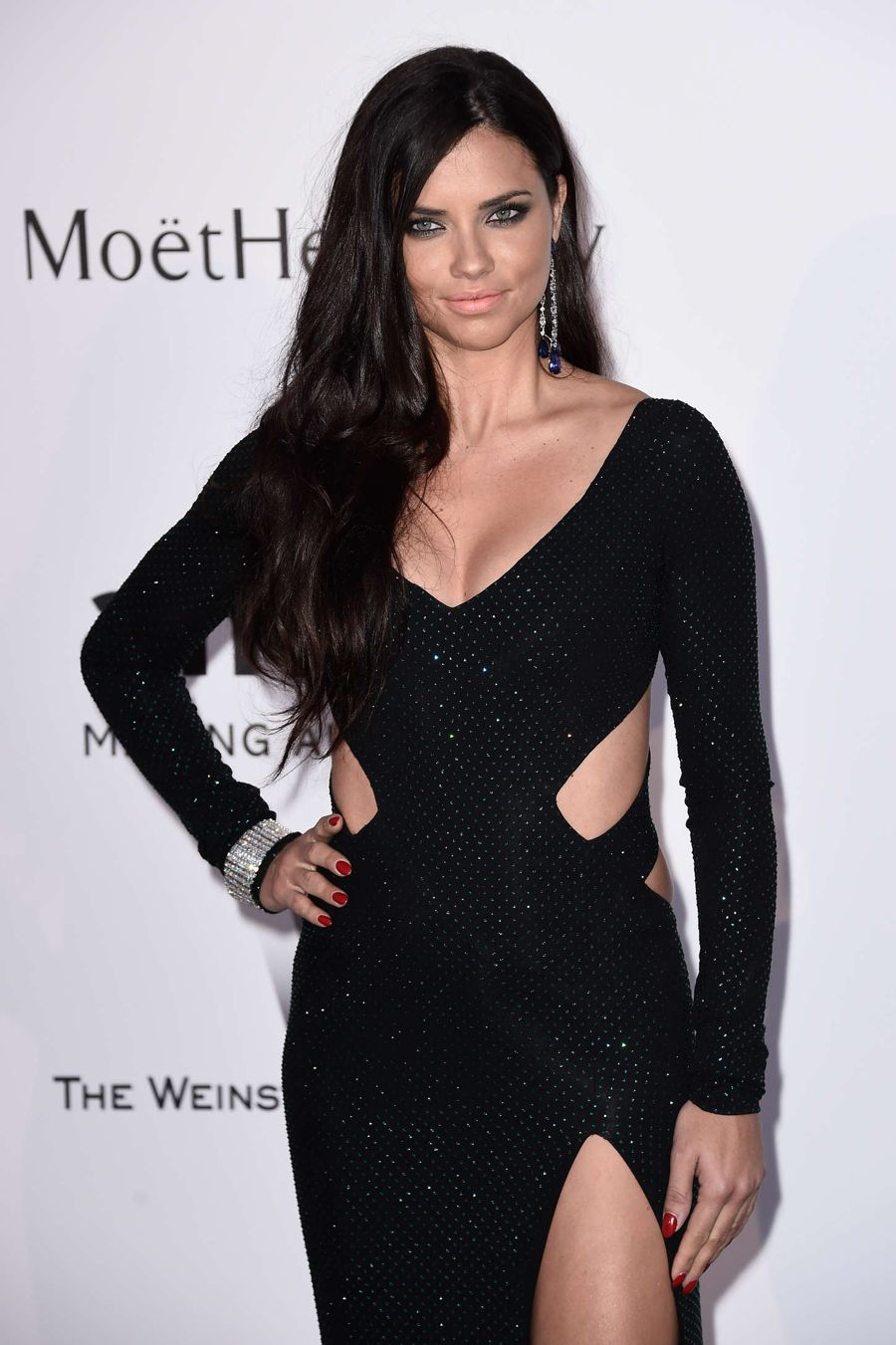 Adriana Lima Steals the Spotlight in amfAR Gala