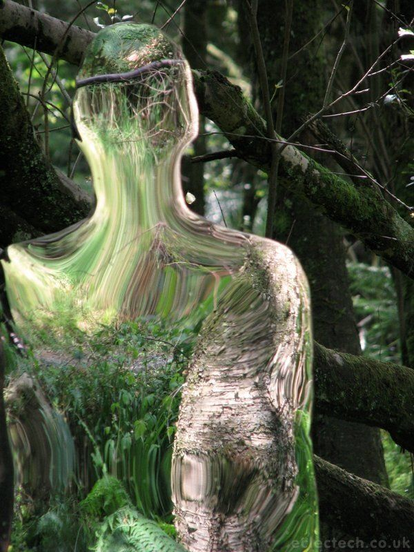 Something Lurking In The Woods - Frightening or Not?
