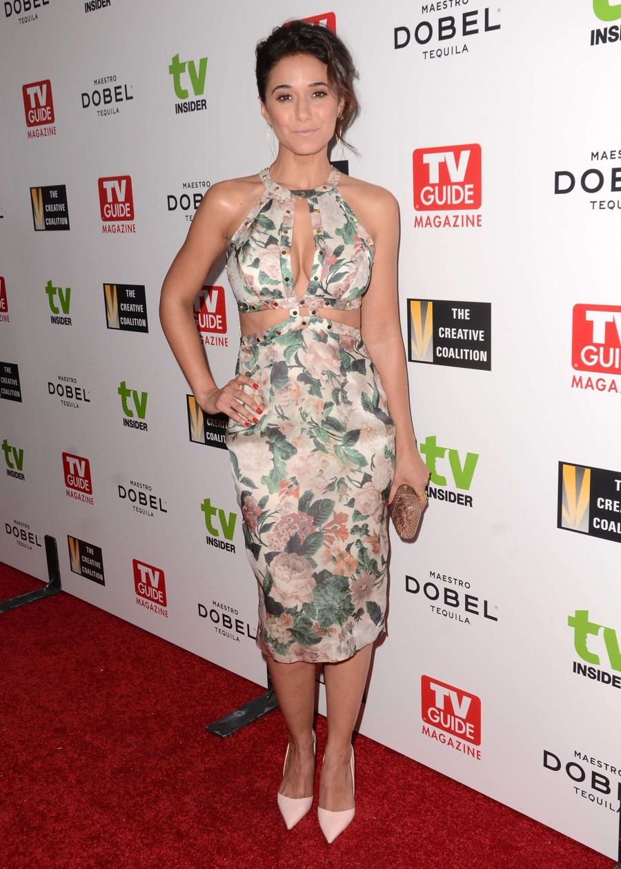 Emmanuelle Chriqui - Television Industry Advocacy Awards