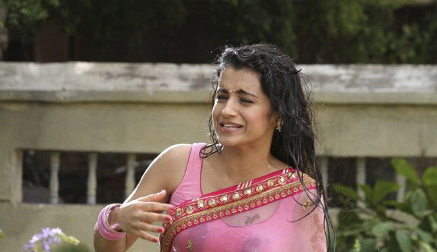 Trisha Sizzles in Pink Saree