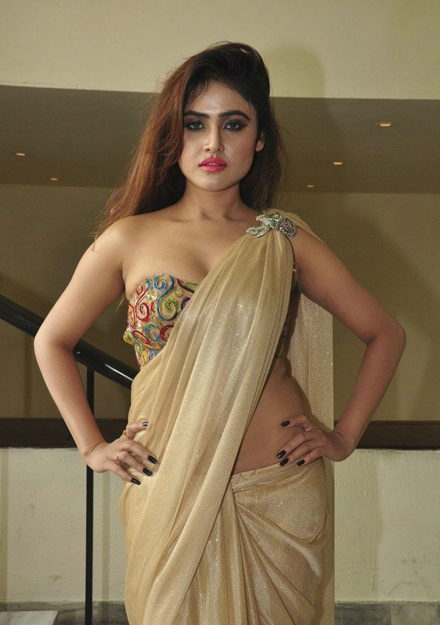 Sony Charishta Looks Beyond Gorgeous in Saree
