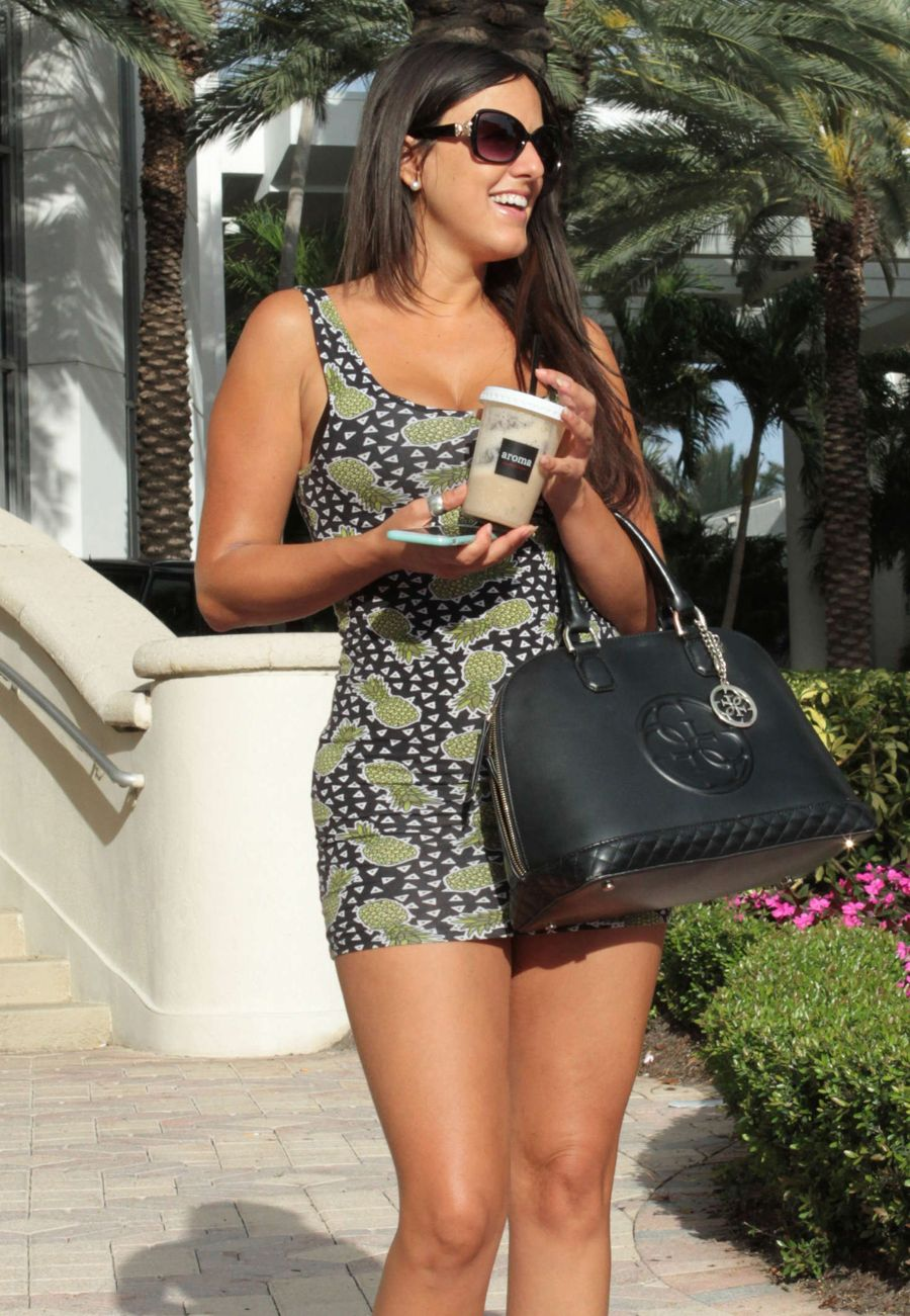 Claudia Romani Poses in Short Dress in Miami
