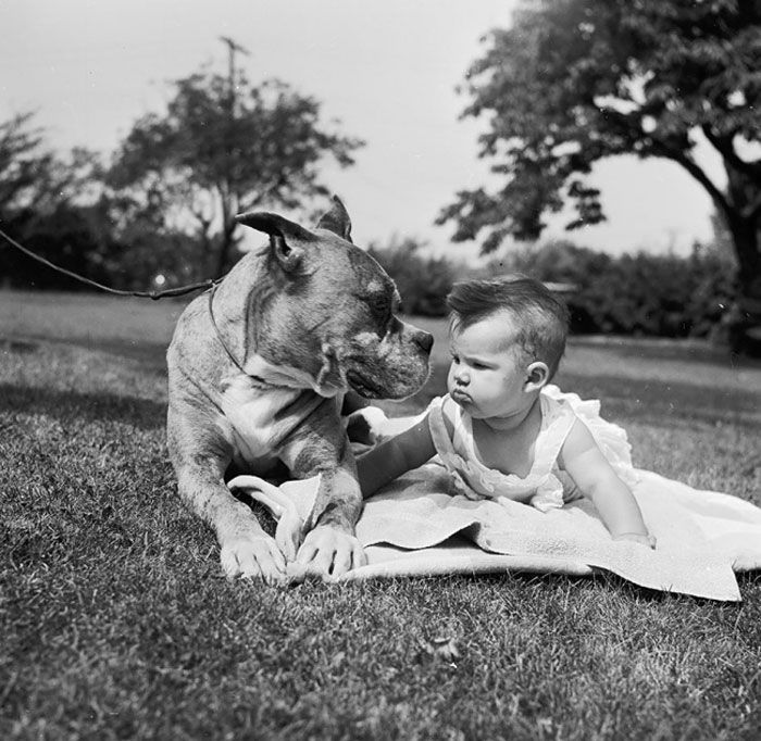 The Eternal Bond Between Babies And Their Dogs
