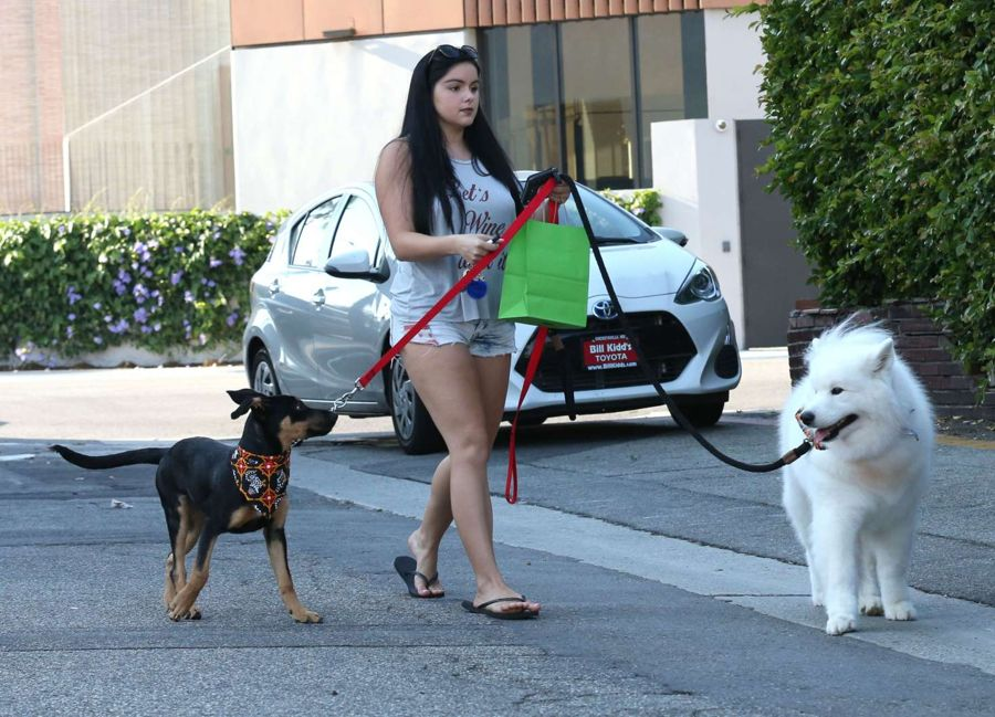 Ariel Winter - Seen with her Dogs in West Hollywood