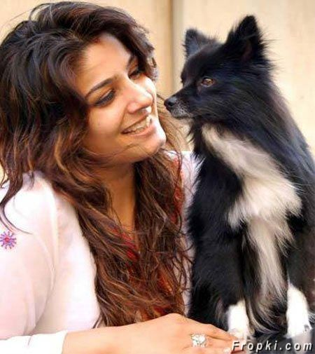 Bollywood's truth about Cats and Dogs!