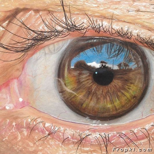 Realistic Eyes Drawn Using Just Colored Pencils