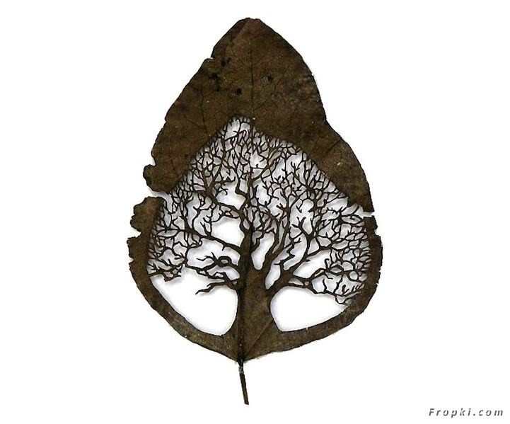 Incredible Leaf Art
