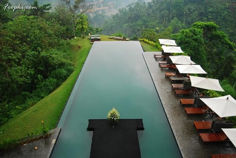 Most Beautiful Swimming Pools in the World