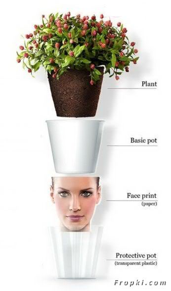 Creative Flowerpots with faces on them
