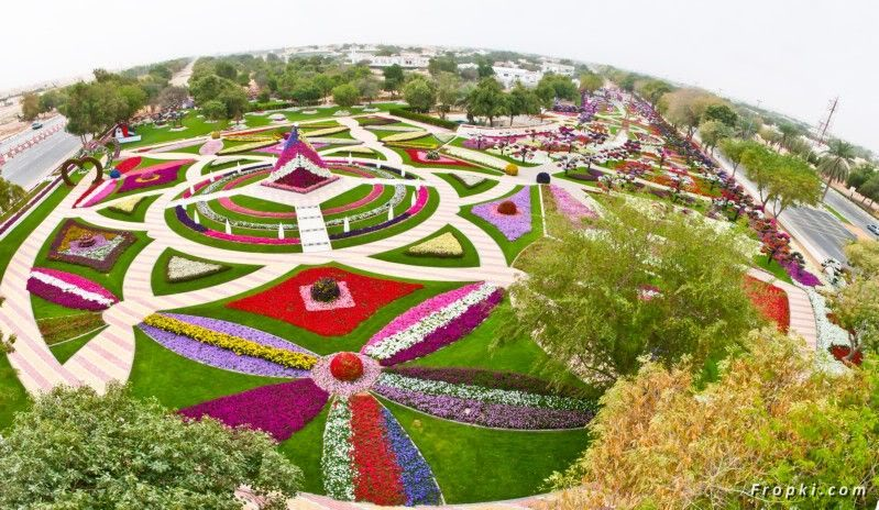 Beautiful Flower Park in Dubai