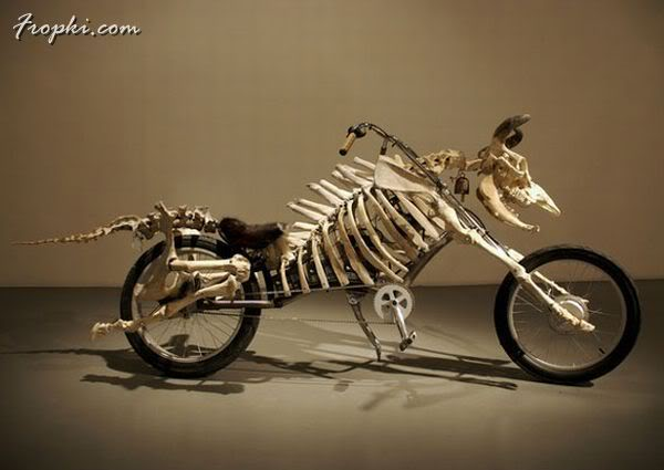 Bikes Shaped Like Animals