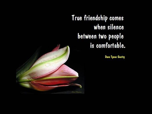 True Friendship is Never Serene