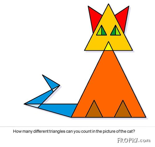 How Many Triangles in a Cat?
