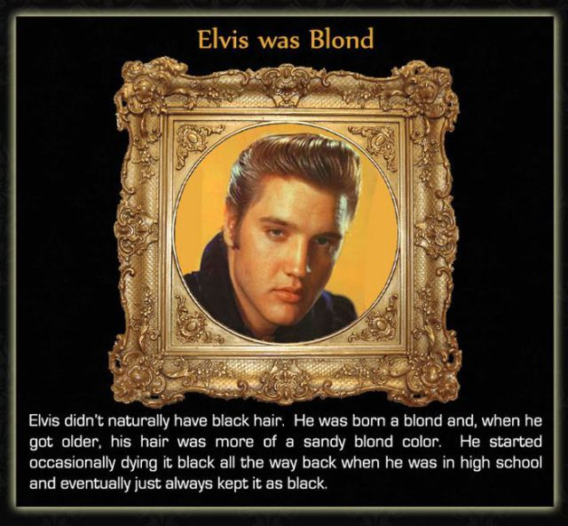Interesting Facts about Celebrities