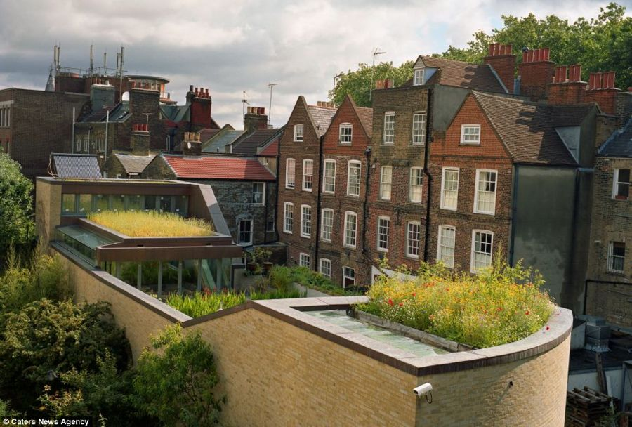 Roof Gardens: Gardens of Eden