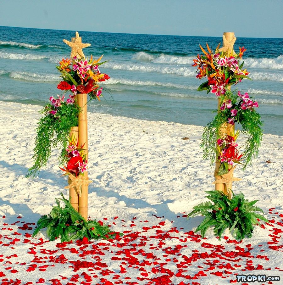 Dream Locations for Weddings Near Beaches