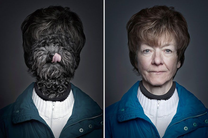 Dogs Dressed as their Owners