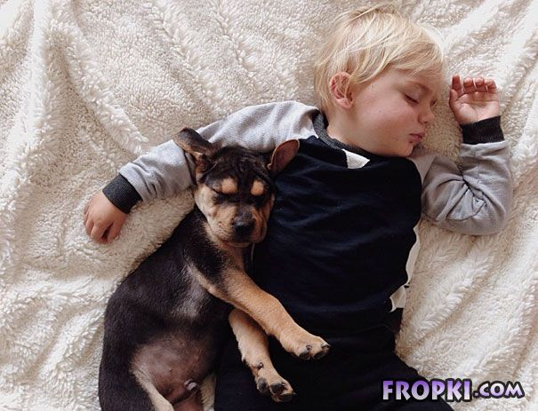 Toddler Takes Daily Naps With 2-Month-Old Puppy