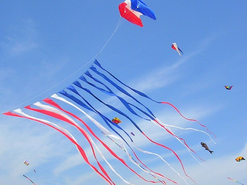 Fanciest Kites in the Sky