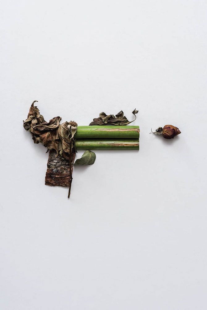 Harmless Weapons Made from Plants