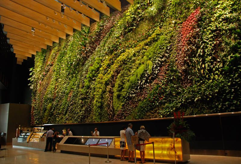Incredible Vertical Gardens Around the World