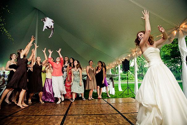 Bride Throws Cats at her Maids