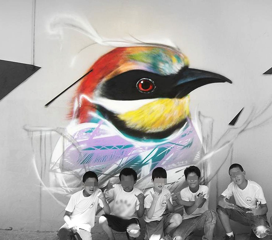 Graffiti Birds on the Streets of Brazil